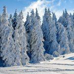 Die Vorteile einer Winterhochzeit